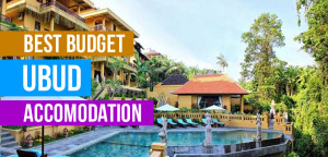 Ubuds Best Buget Accommodation  The BEST Bali Travel Guides, Tips and Bali Advice Ubuds Best Buget Accommodation