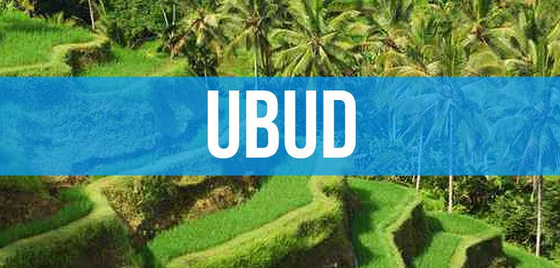 Ubud Bali Travel Guide
