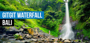 Gitgit Waterfall  Dolphin Watching, Waterfalls and Ulundanu Temple Tour in Bali Gitgit Waterfall