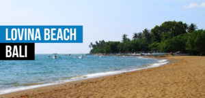 Lovina Beach Bali  Dolphin Watching, Waterfalls and Ulundanu Temple Tour in Bali lOVINA bEACH