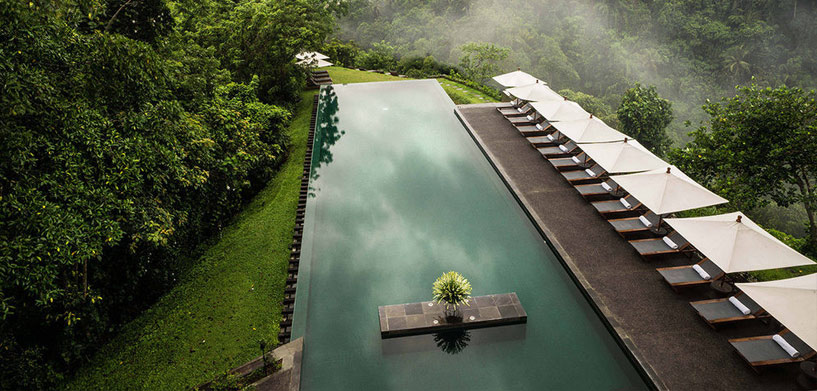 Alila Ubud Pool  The Best Hotel Pools in Bali Alila Ubud Pool